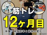 【筋トレ】運動ゼロから1年続けた見た目と筋肉量の変化(成果と効果)